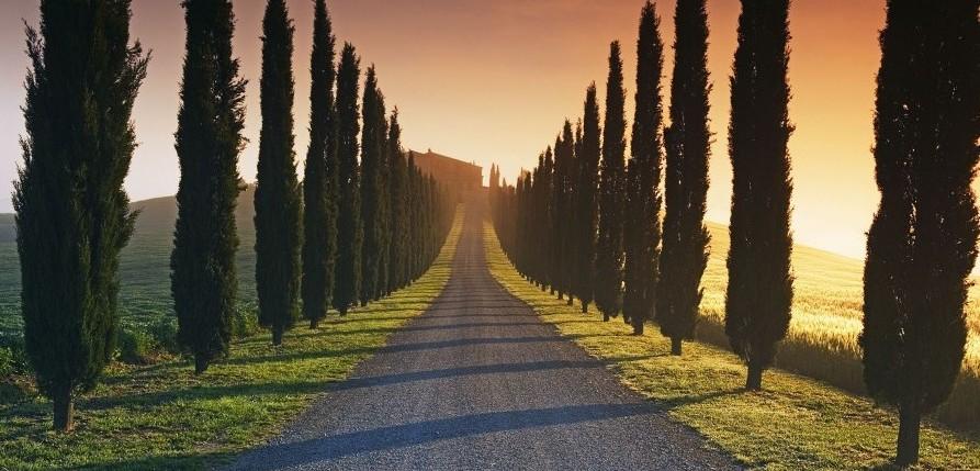 z czym kojarzą Ci się Włochy