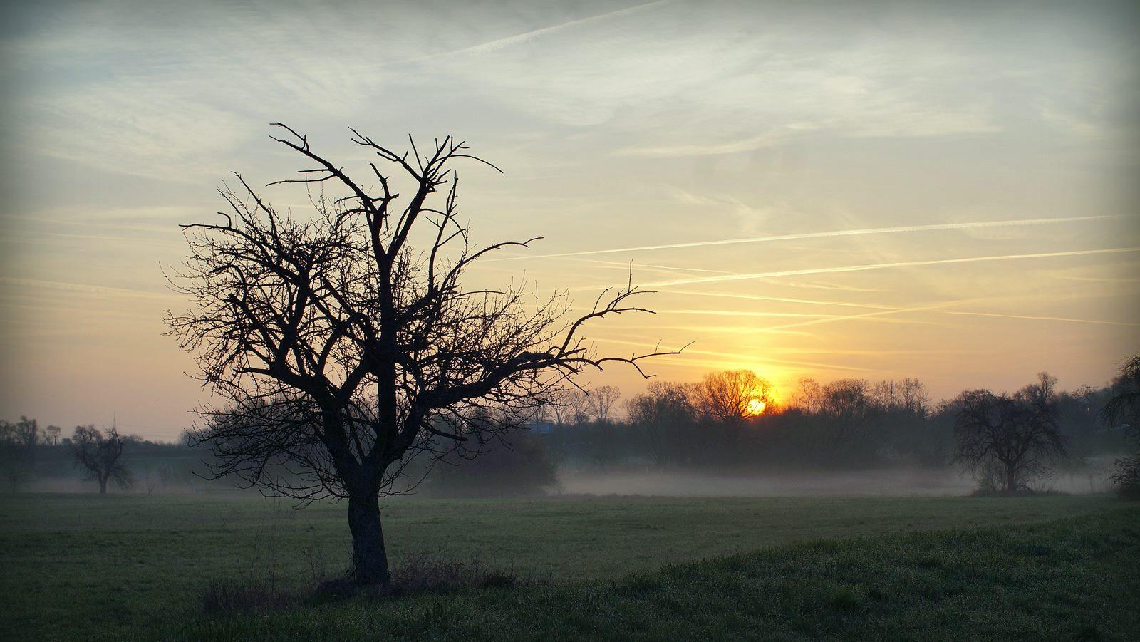 7 inspirujących piosenek na świetny poranek