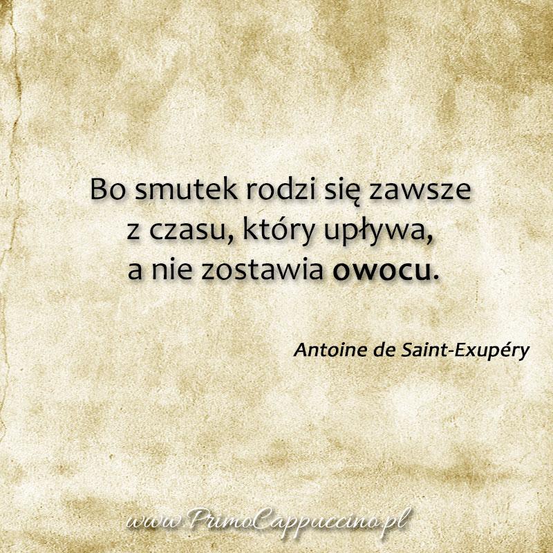 język włoski jak się uczyć, nauka języka włoskiego, cytaty o smutku, cytaty antoine saint exupery